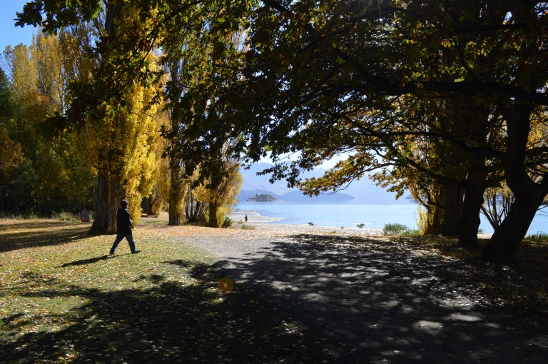 Eely Point Recreational Reserve in Wanaka, New Zealand