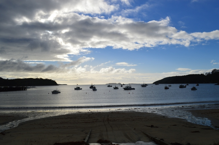 Stewart Island view in dawn
